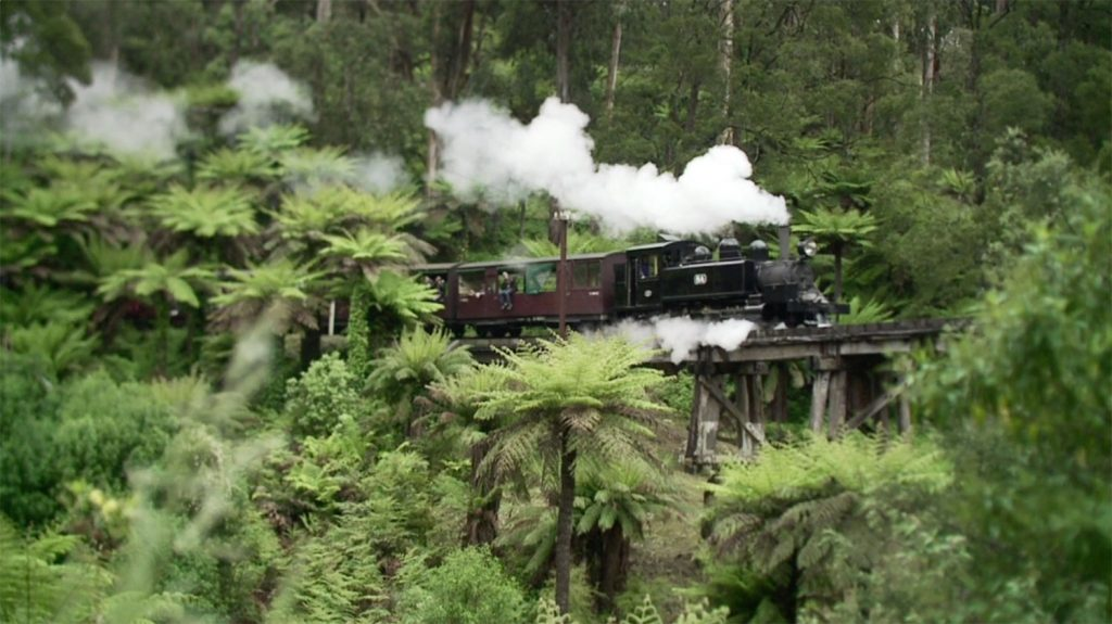 puffing billy half day tour